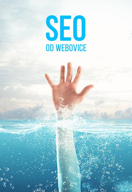 Kvalitné SEO služby lacno a rýchlo | SEO od Webovice.sk