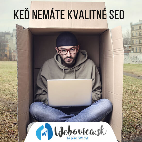 SEO konzultácia lacno a rýchlo. SEO služby od Webovice.sk